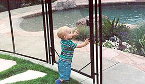 Pool Fence 101